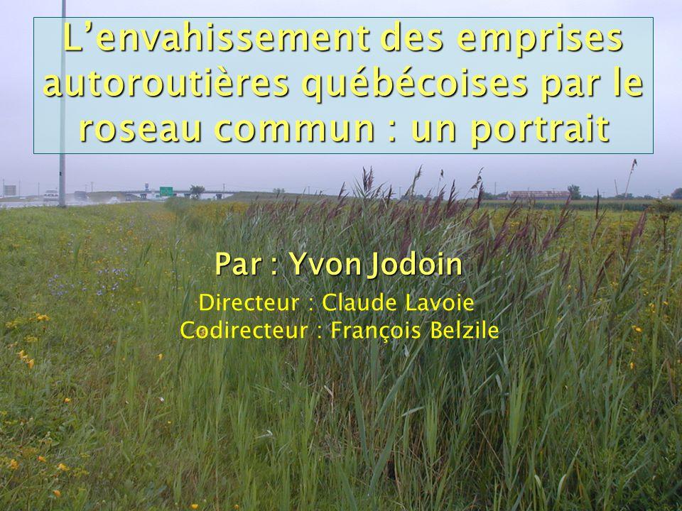 L'envahissement des emprises autoroutières québécoises par le roseau commun : un portrait