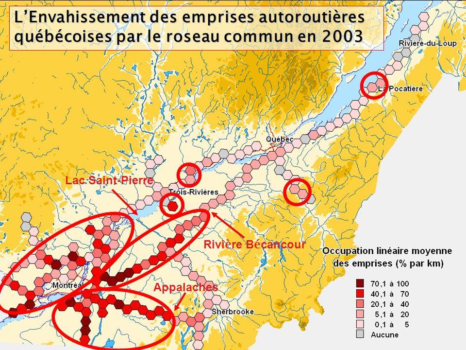 L'Envahissement des emprises autoroutières québécoises par le roseau commun en 2003