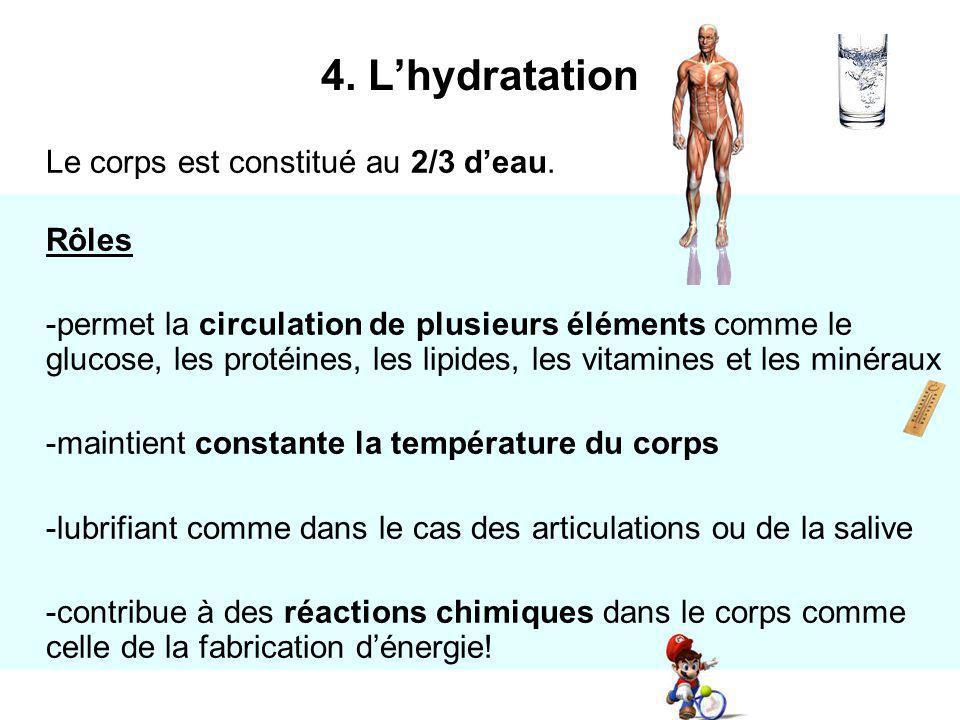 4. L'hydratation Le corps est constitué au 2/3 d'eau. Rôles.