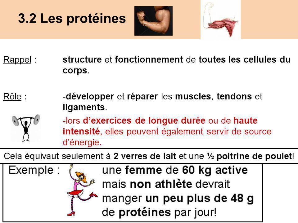 3.2 Les protéines Rappel : structure et fonctionnement de toutes les cellules du corps.