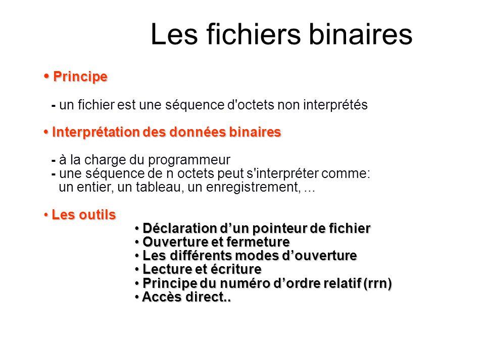 Les fichiers binaires • Principe