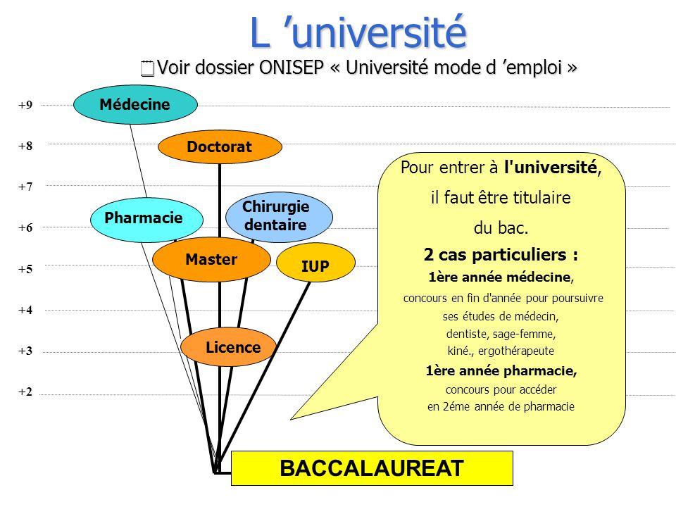 L 'université Voir dossier ONISEP « Université mode d 'emploi »