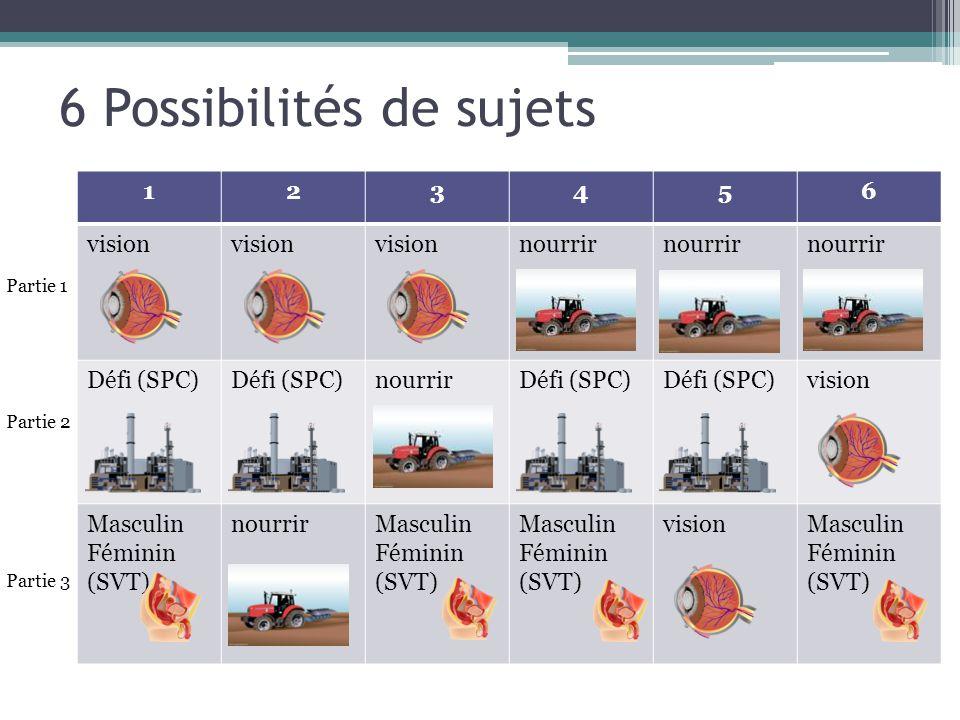 6 Possibilités de sujets