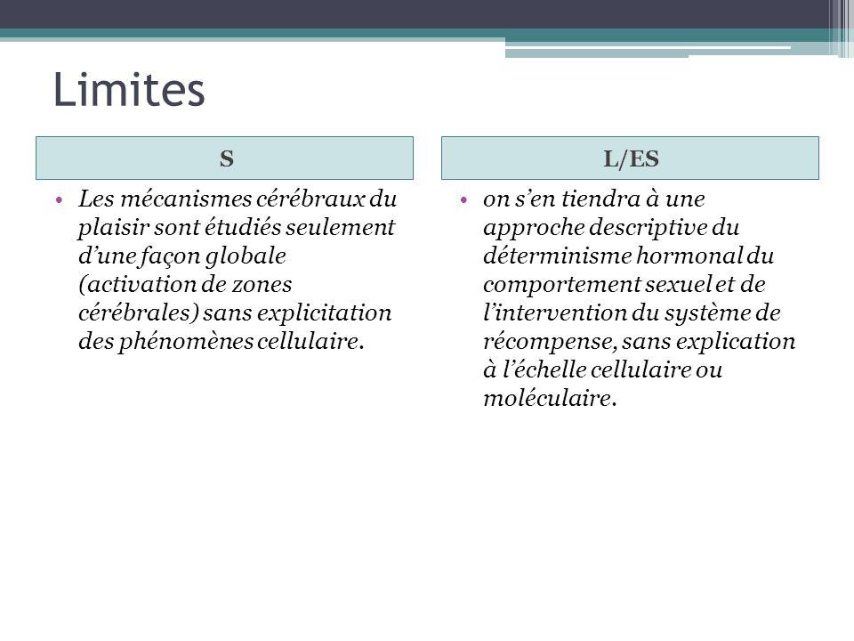 Limites S. L/ES.