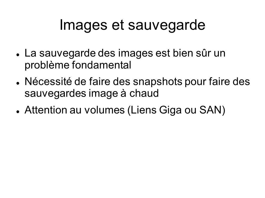 Images et sauvegarde La sauvegarde des images est bien sûr un problème fondamental.