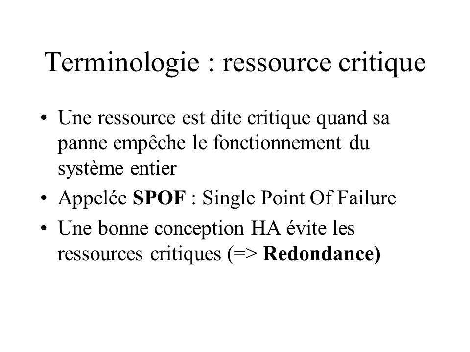 Terminologie : ressource critique