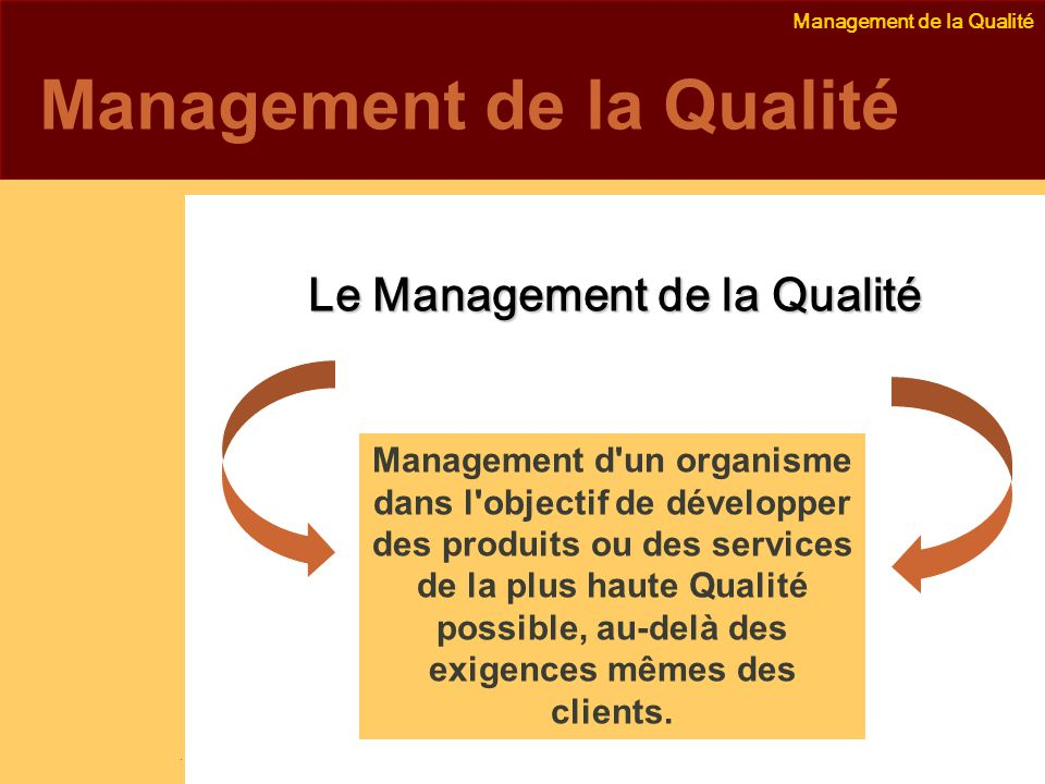 Management de la Qualité