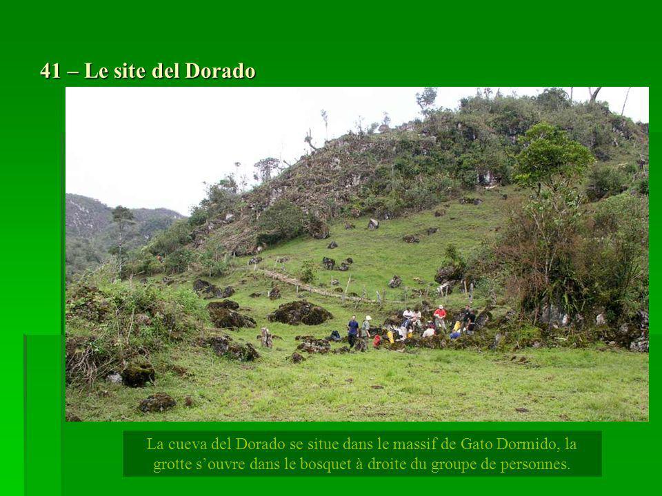 41 – Le site del Dorado