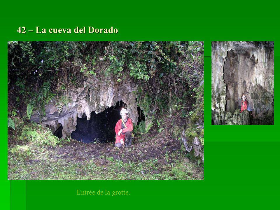 42 – La cueva del Dorado Entrée de la grotte.