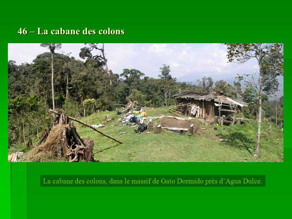 46 – La cabane des colons La cabane des colons, dans le massif de Gato Dormido près d'Agua Dulce.