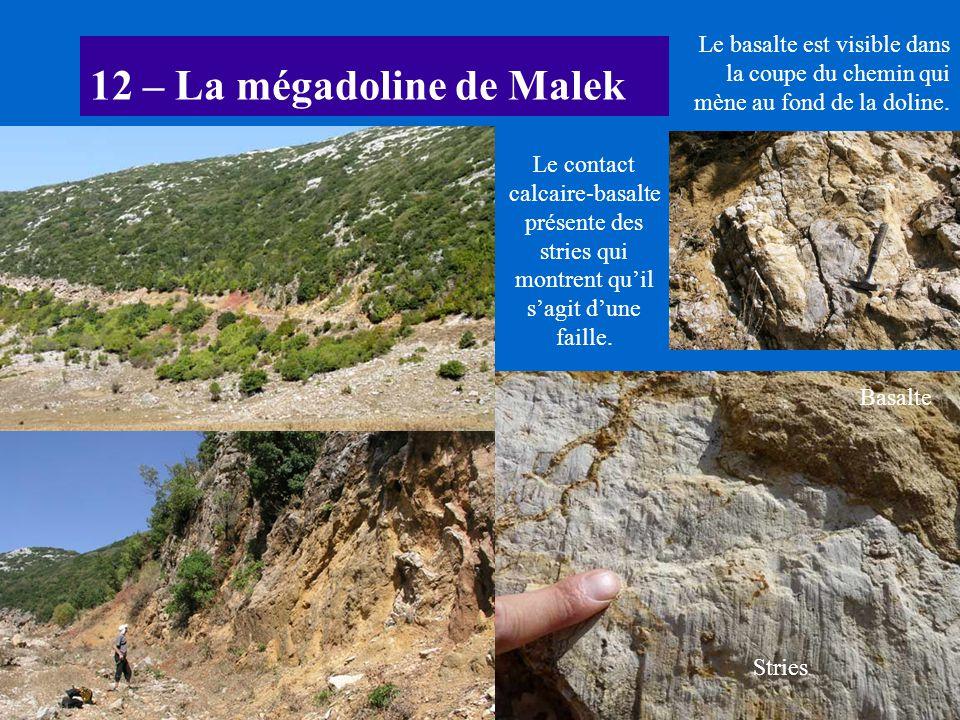 12 – La mégadoline de Malek