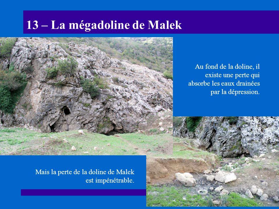 13 – La mégadoline de Malek