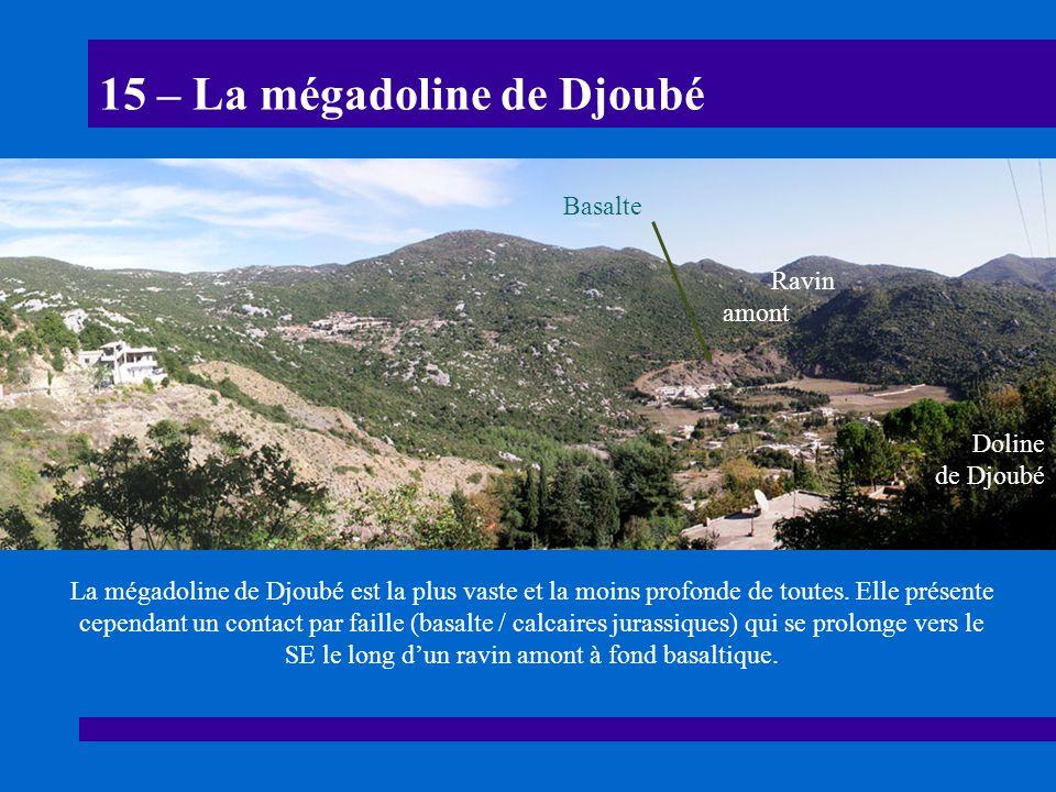 15 – La mégadoline de Djoubé