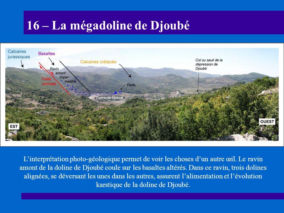 16 – La mégadoline de Djoubé