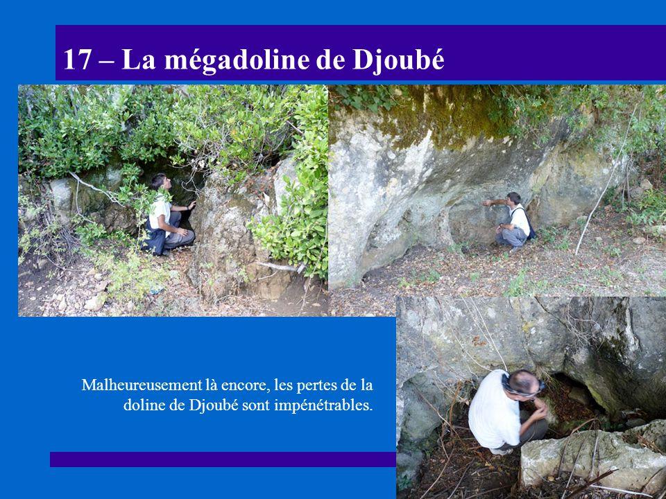 17 – La mégadoline de Djoubé