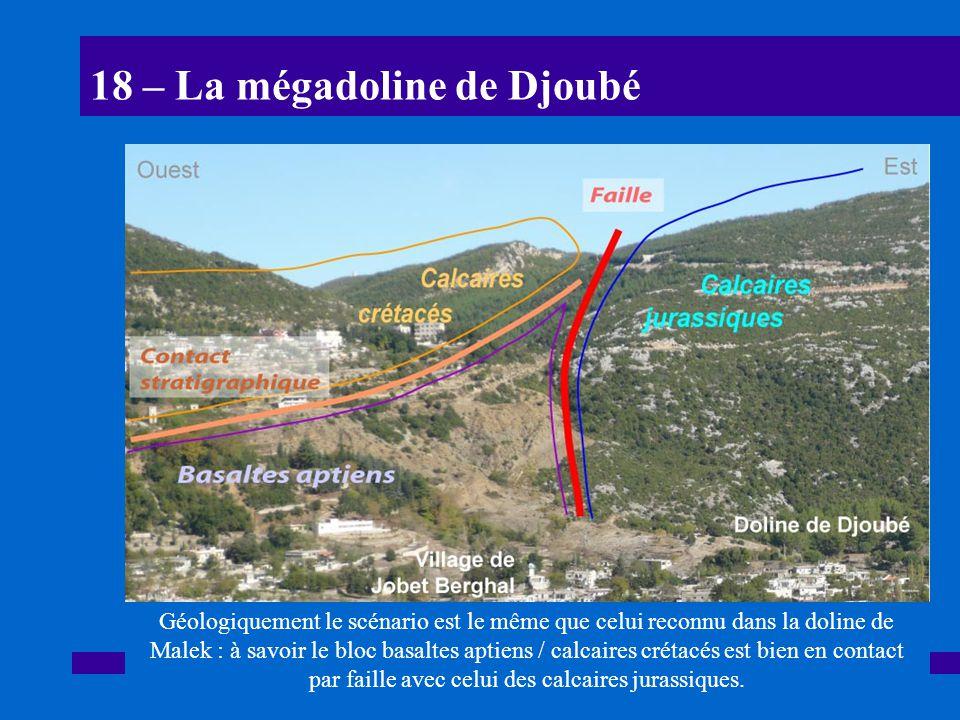 18 – La mégadoline de Djoubé
