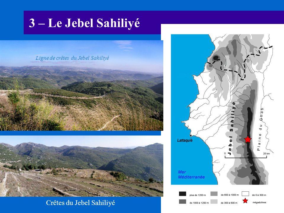 3 – Le Jebel Sahiliyé Crêtes du Jebel Sahiliyé