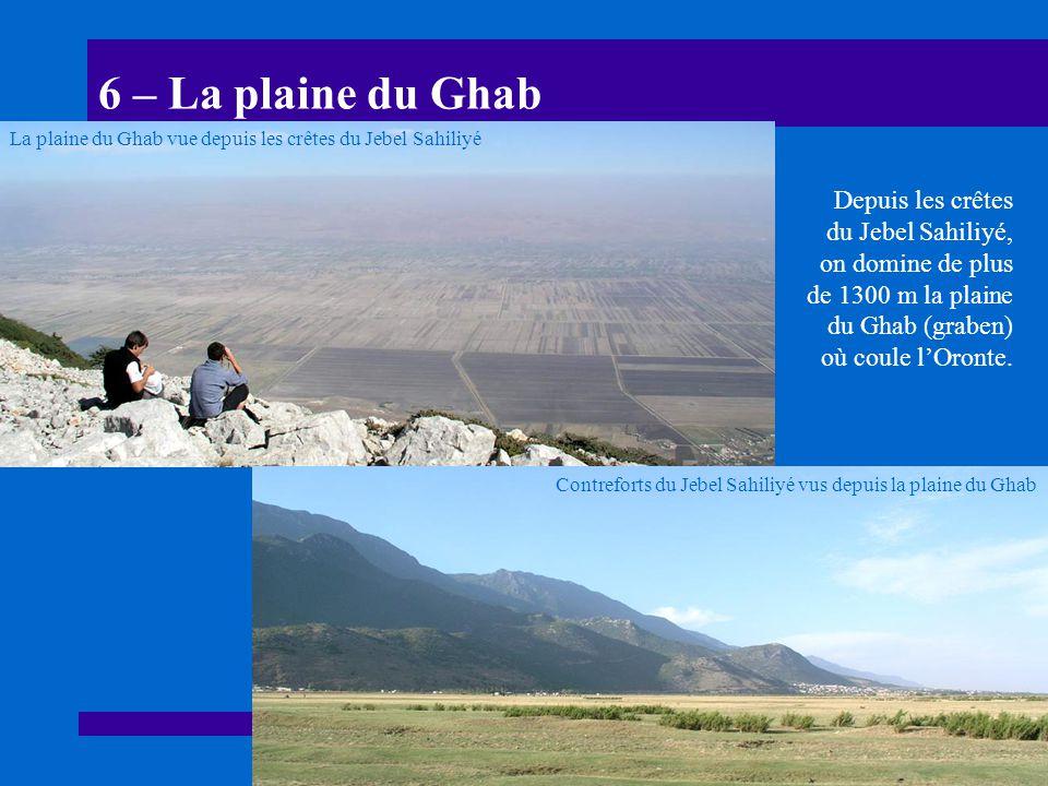 6 – La plaine du Ghab La plaine du Ghab vue depuis les crêtes du Jebel Sahiliyé.