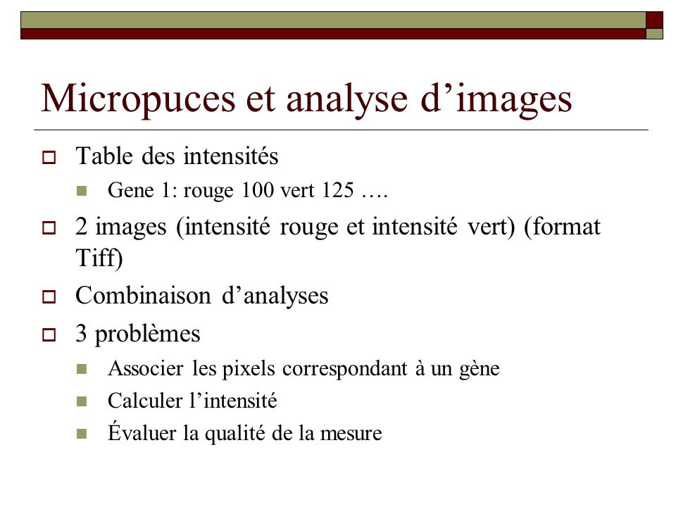 Micropuces et analyse d'images