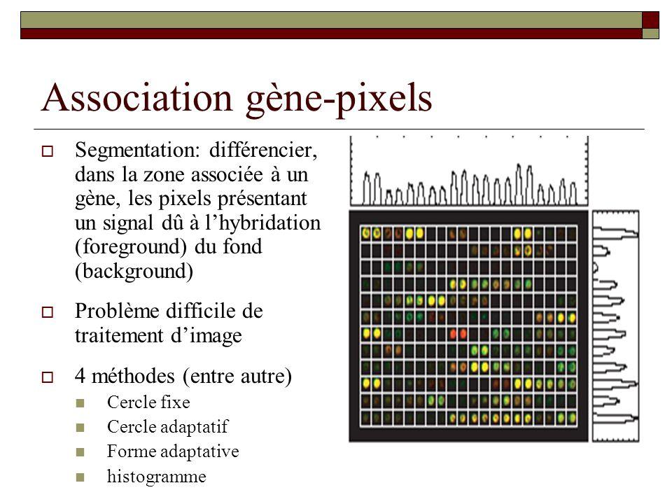 Association gène-pixels