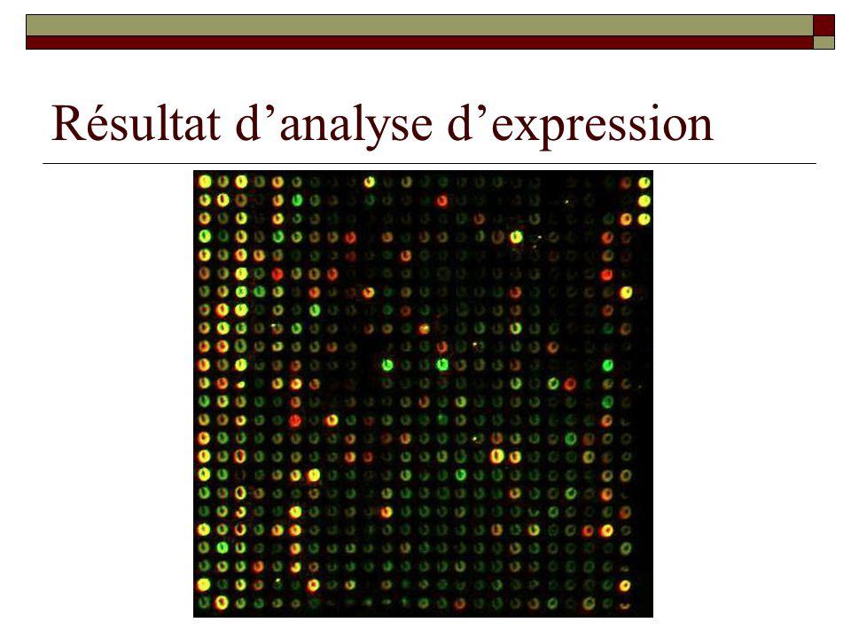 Résultat d'analyse d'expression