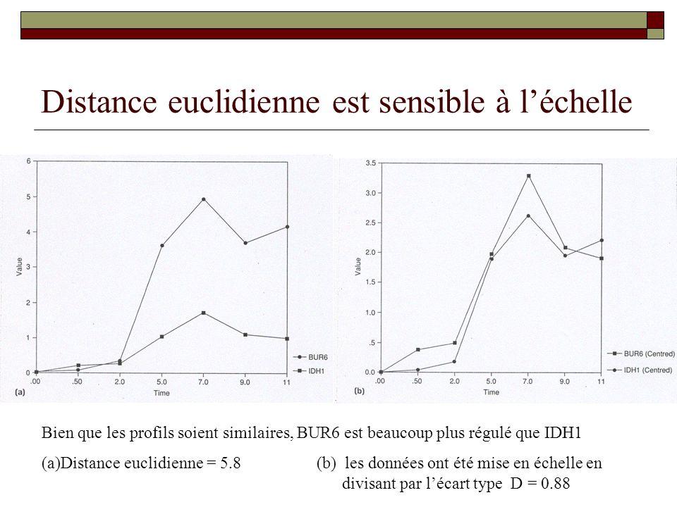Distance euclidienne est sensible à l'échelle
