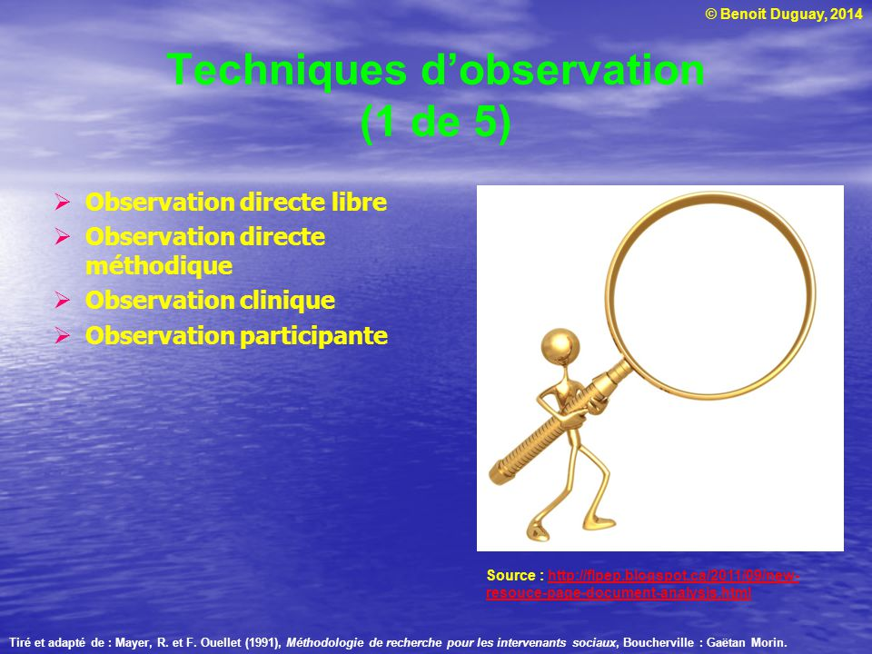 Techniques d'observation (1 de 5)