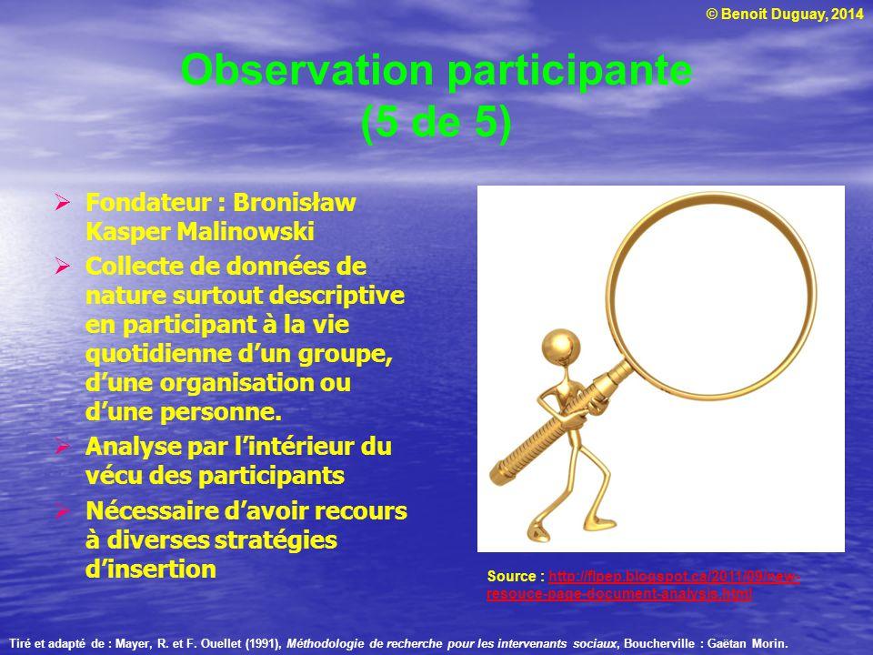 Observation participante (5 de 5)