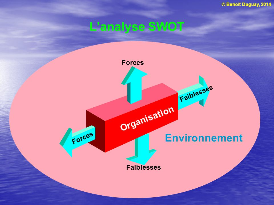 L'analyse SWOT Organisation Environnement Faiblesses Forces