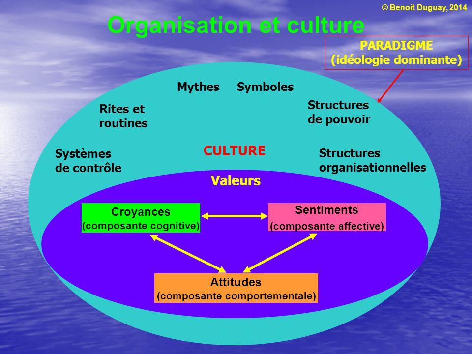 Organisation et culture