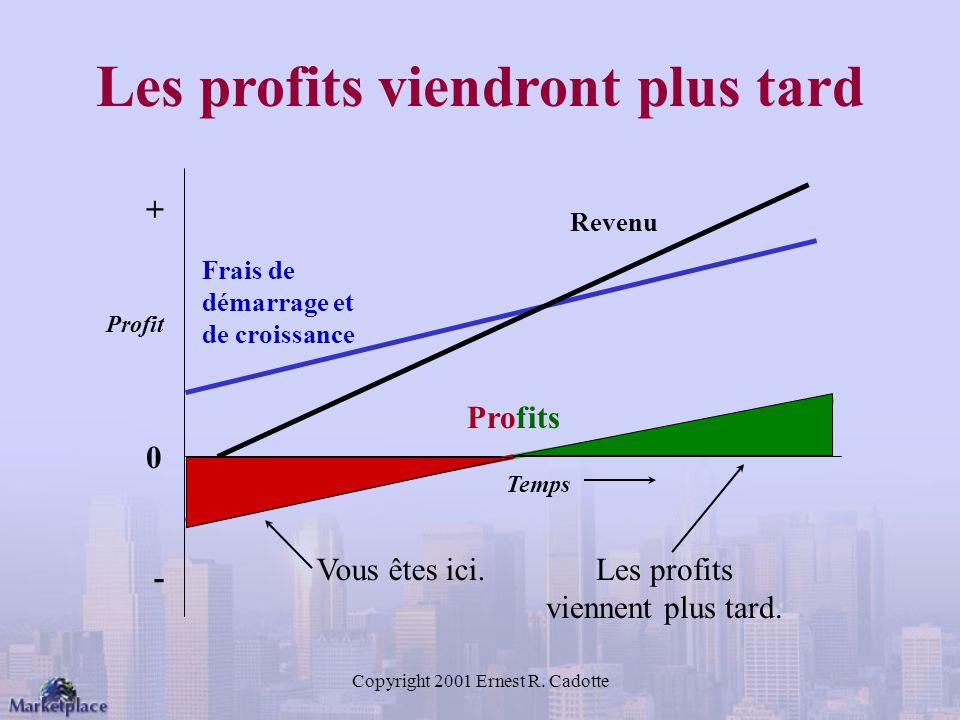 Les profits viendront plus tard