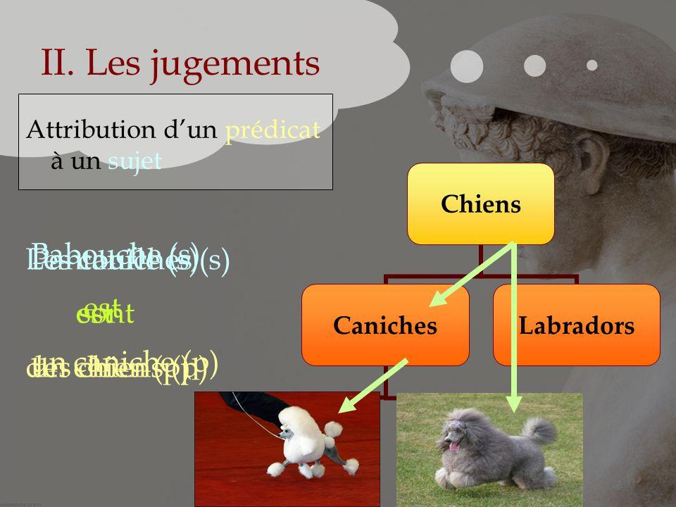 II. Les jugements Babouche (s) est un caniche (p) Les caniches (s)
