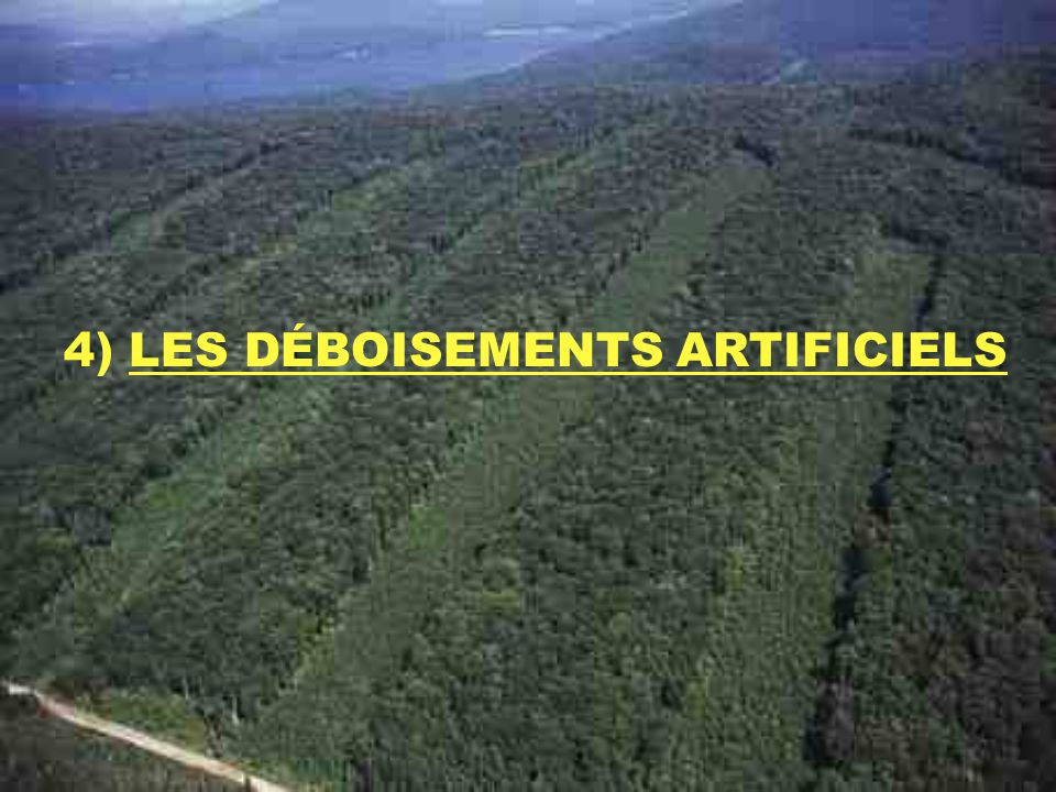 4) LES DÉBOISEMENTS ARTIFICIELS