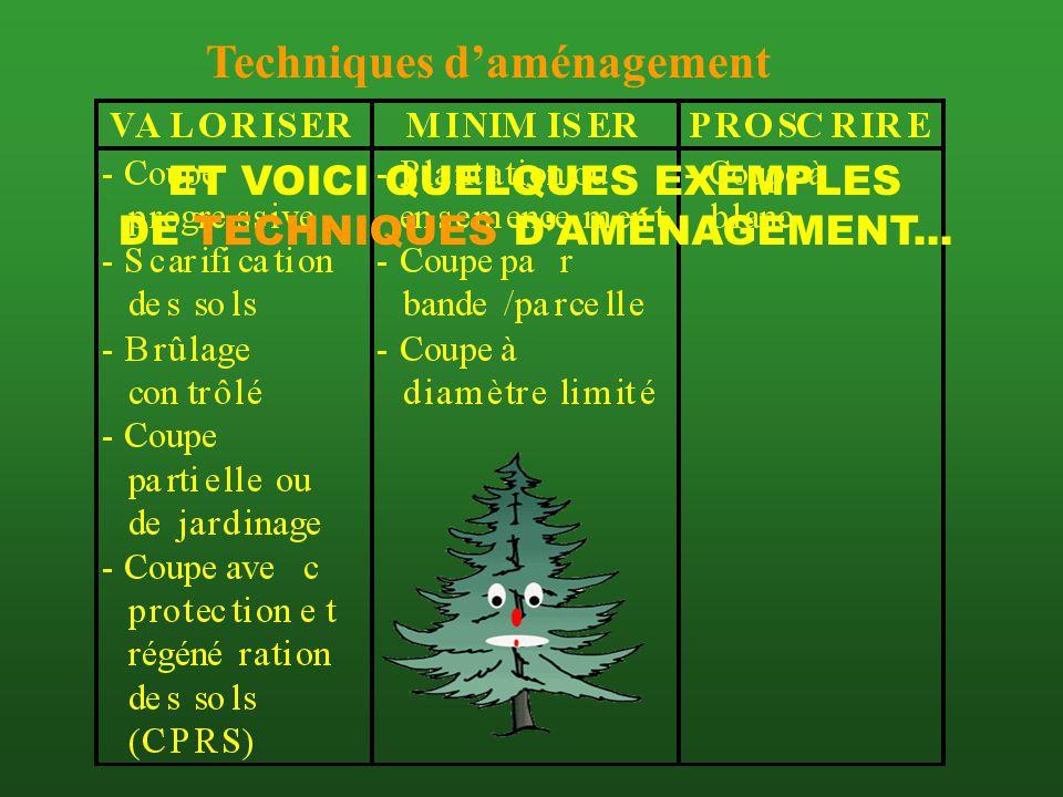 ET VOICI QUELQUES EXEMPLES DE TECHNIQUES D'AMÉNAGEMENT...