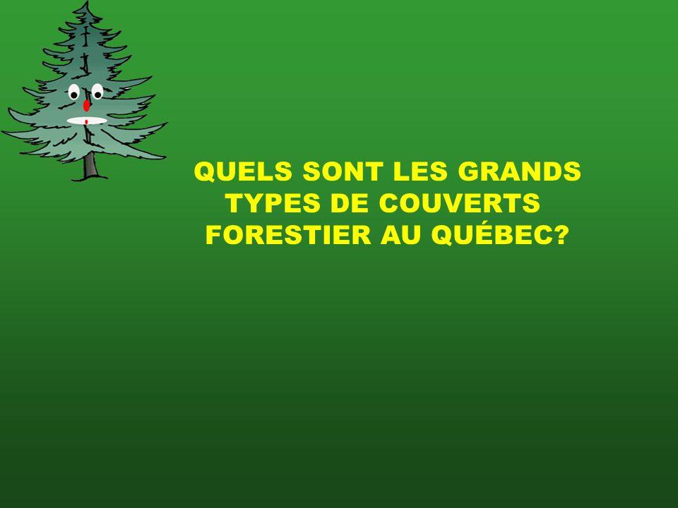 QUELS SONT LES GRANDS TYPES DE COUVERTS FORESTIER AU QUÉBEC