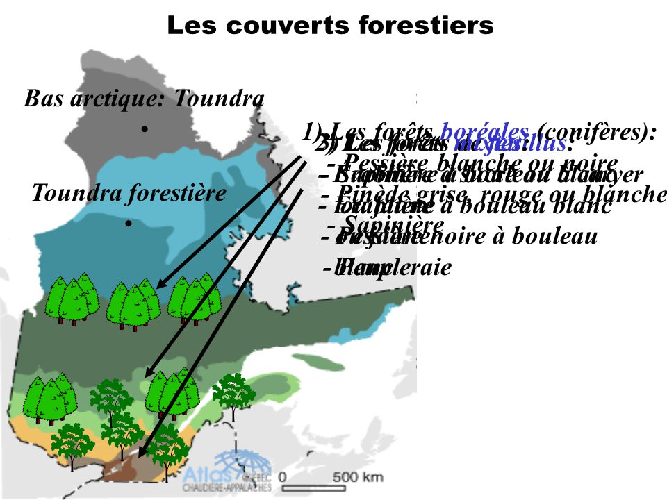 Les couverts forestiers