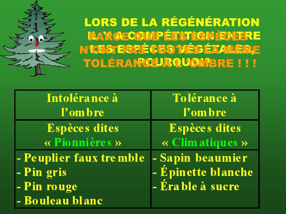 LORS DE LA RÉGÉNÉRATION IL Y A COMPÉTITION ENTRE