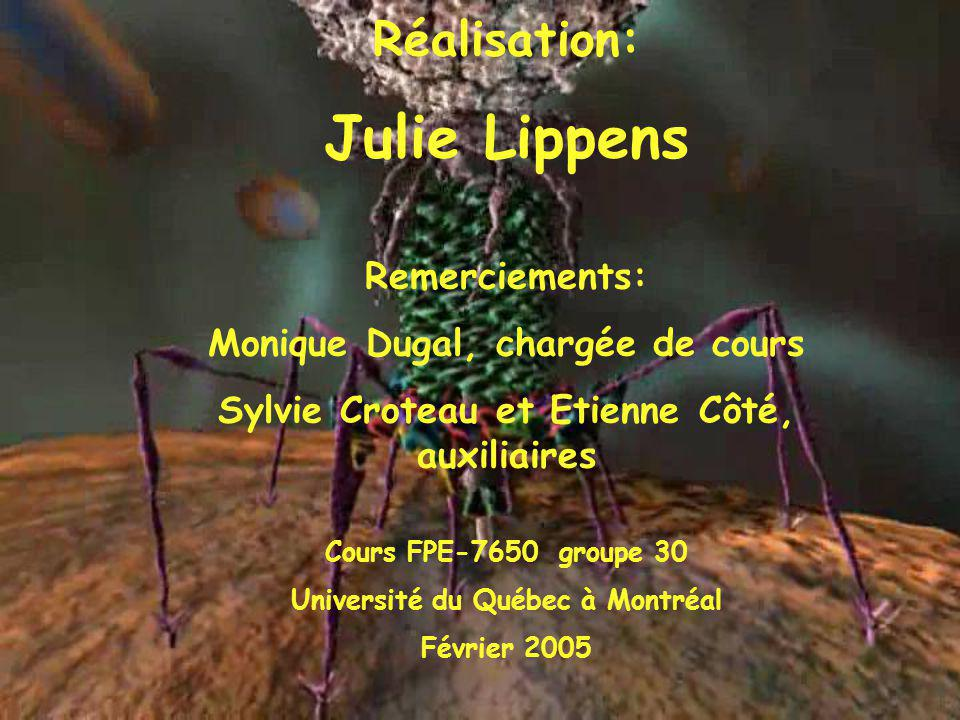 Julie Lippens Réalisation: Remerciements: