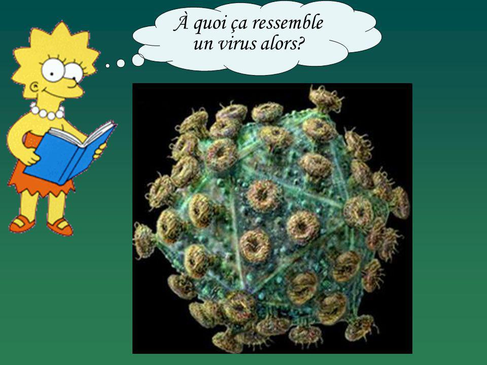 À quoi ça ressemble un virus alors