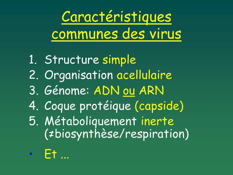 Caractéristiques communes des virus
