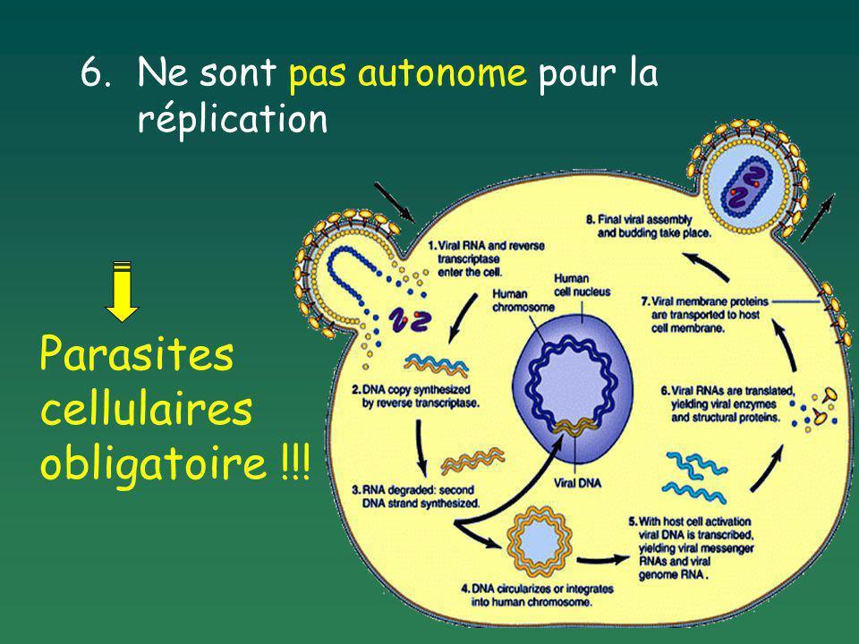 Parasites cellulaires obligatoire !!!