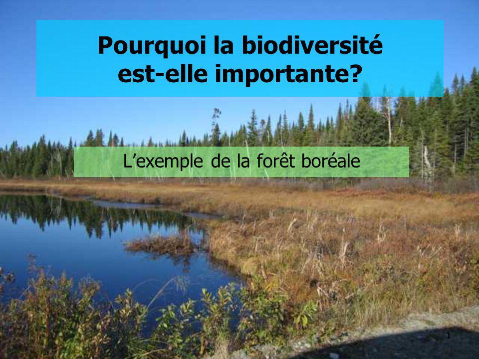 Pourquoi la biodiversité est-elle importante