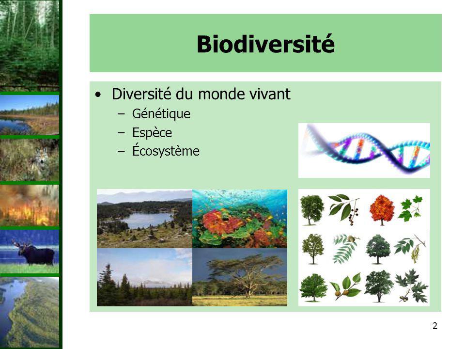 Biodiversité Diversité du monde vivant Génétique Espèce Écosystème