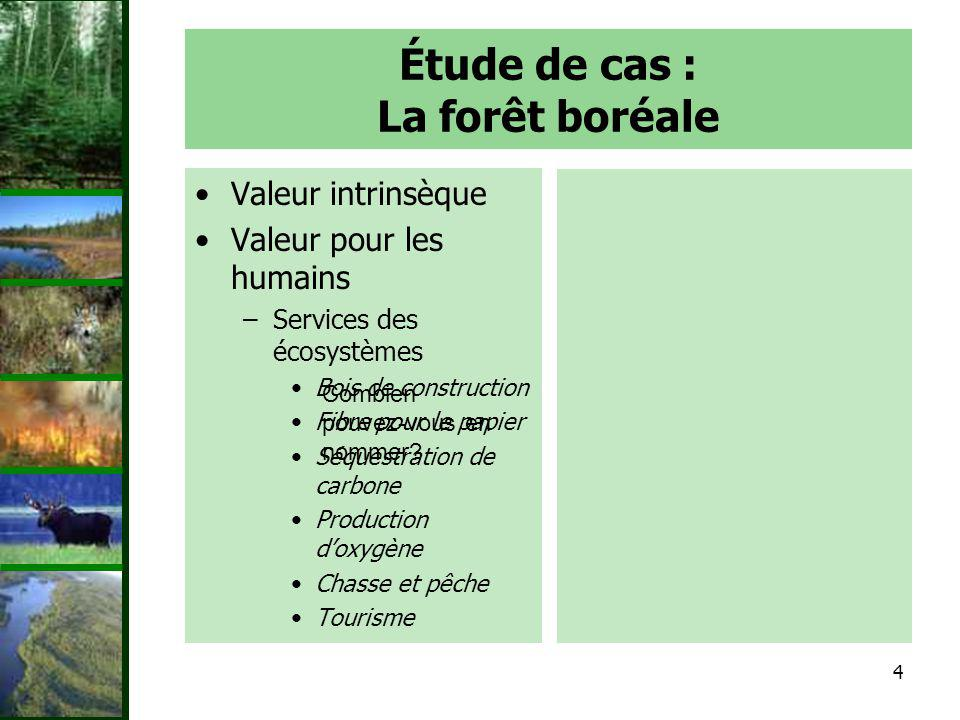 Étude de cas : La forêt boréale