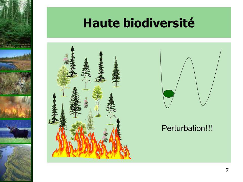 Haute biodiversité Perturbation!!!