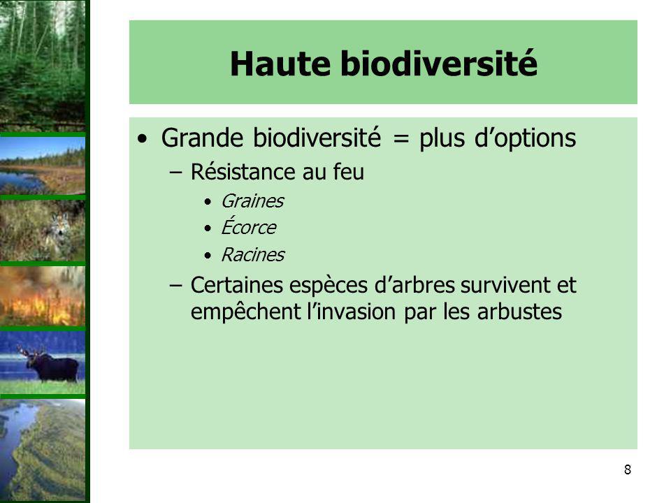 Haute biodiversité Grande biodiversité = plus d'options