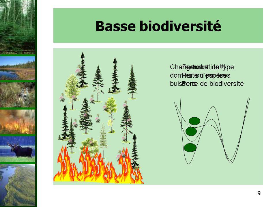 Basse biodiversité Changement de type: domination par les buissons