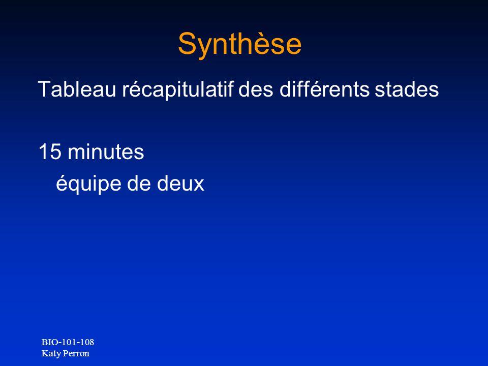 Synthèse Tableau récapitulatif des différents stades 15 minutes