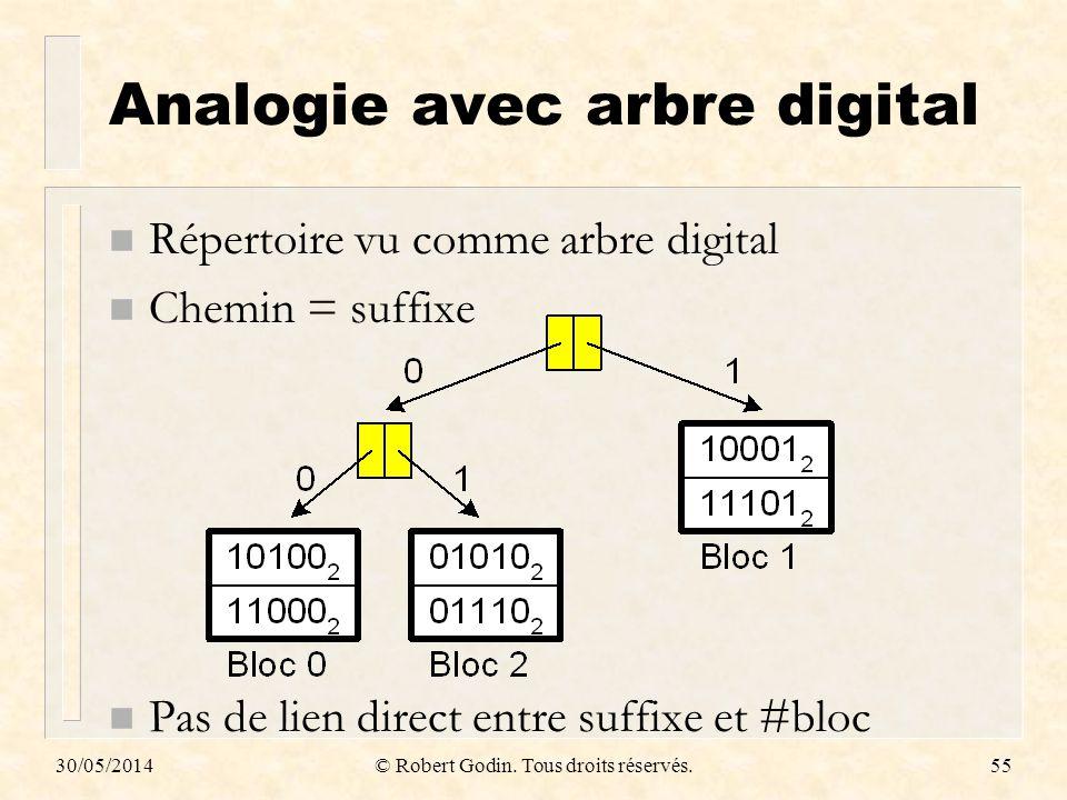 Analogie avec arbre digital