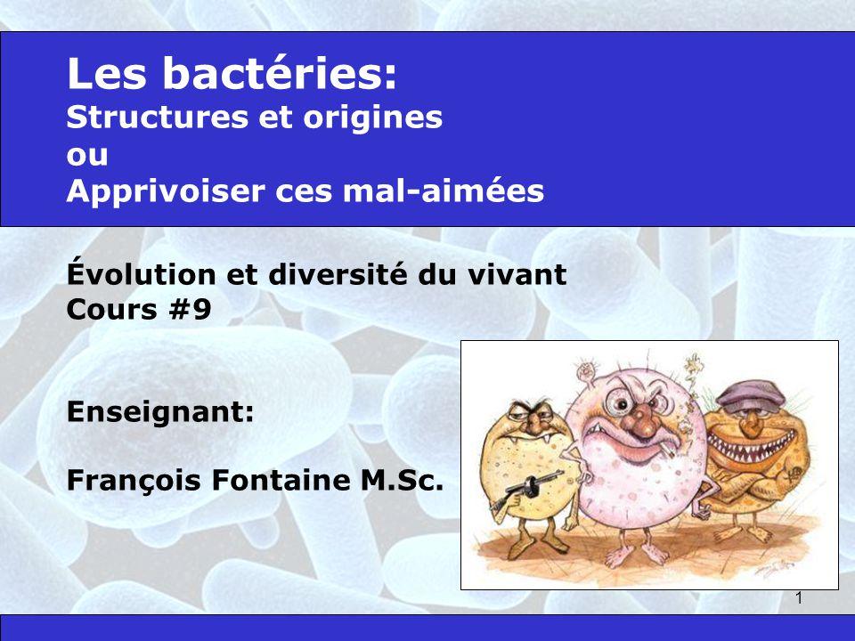 Les bactéries: Structures et origines ou Apprivoiser ces mal-aimées